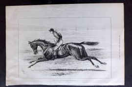 ILN 1880 Antique Print. Bend or, The Winner of the Derby. Horse Racing